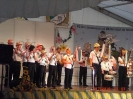 Heimatfest 2010